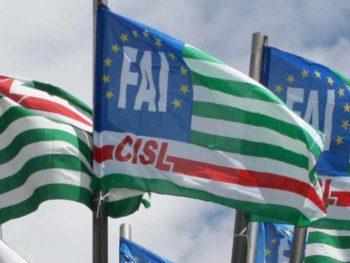 Parmalat di Savigliano: con il 66% dei voti, Fai Cisl primo sindacato in azienda