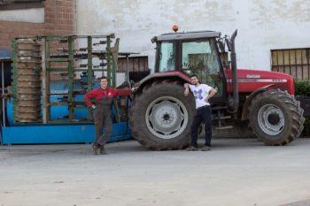 """Altro infortunio mortale nel settore agricolo della """"Granda"""", muore un giovane di 22 anni. Furlan (Cisl): """"Sicurezza problema irrisolto"""""""